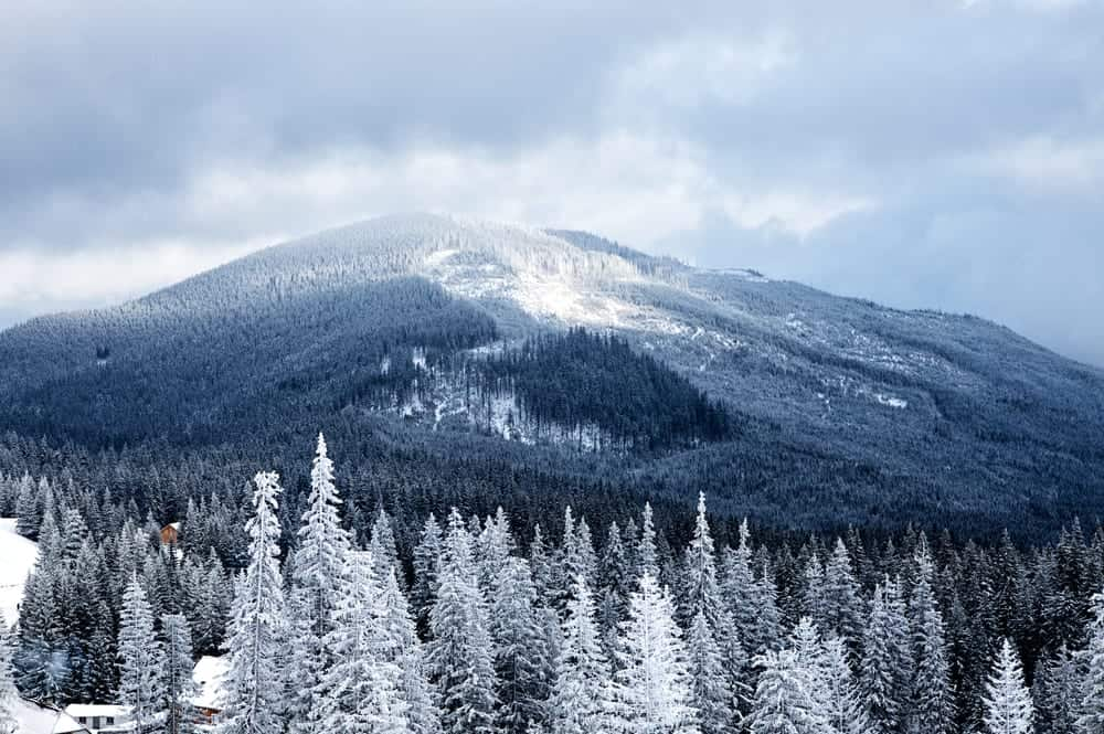 winter vacation in the Smoky Mountains