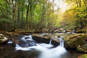 Beautiful Smoky Mountain stream near Gatlinburg TN