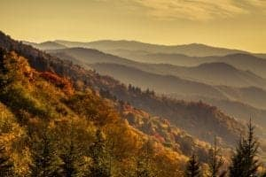 Fall foliage at Great Smoky Mountains National Park