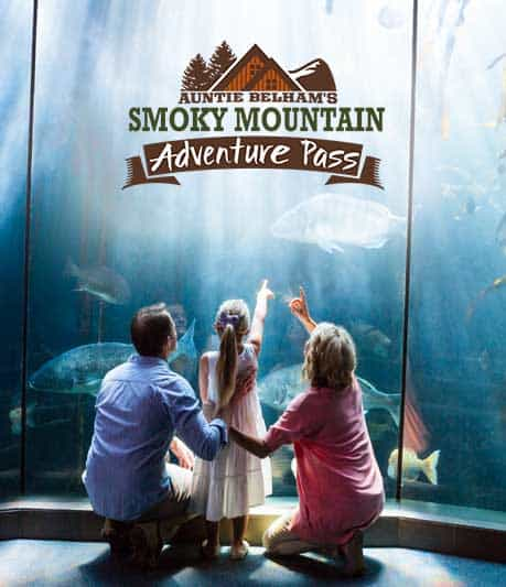 Free Gatlinburg attraction tickets with our Smoky Mountain Adventure Pass